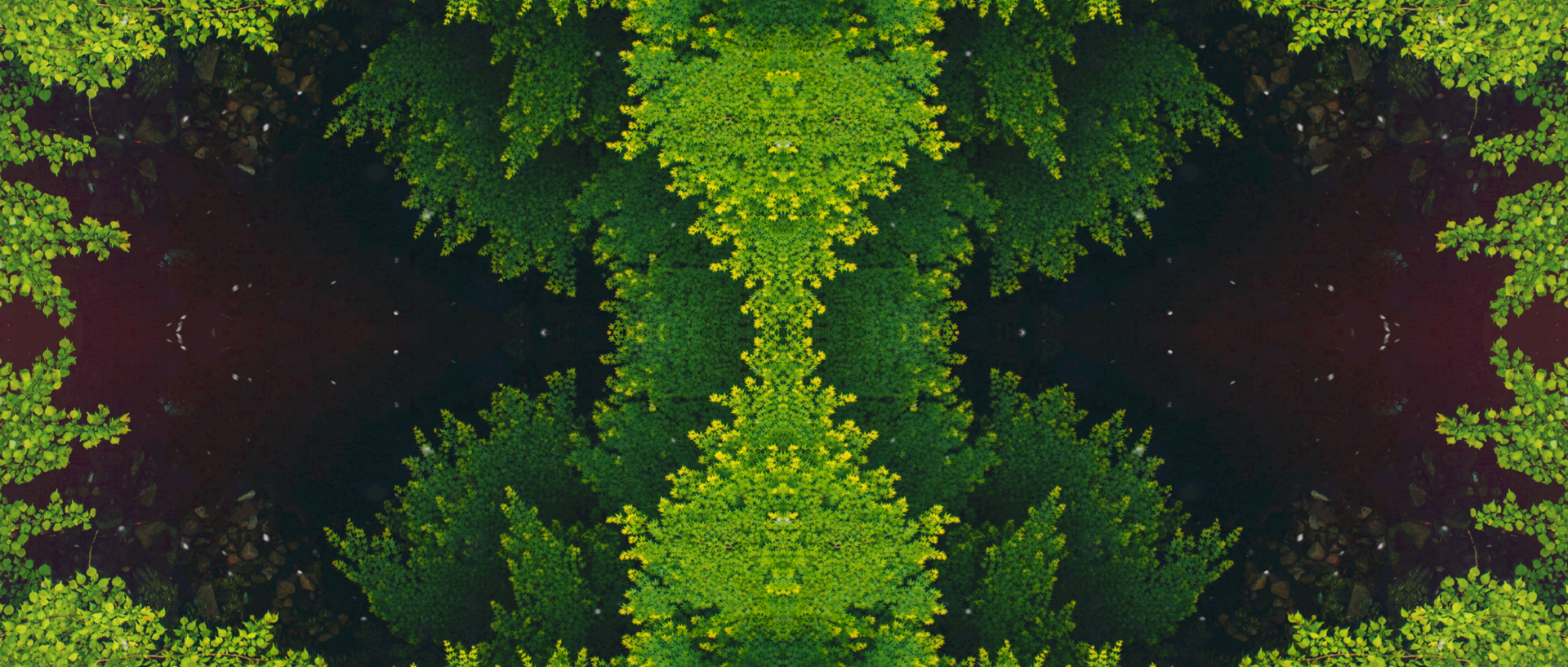 tycho_easy_fractal_01