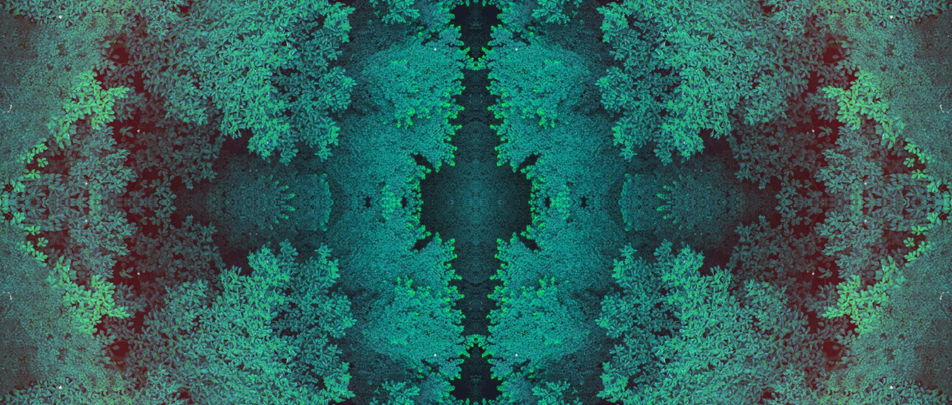 tycho_easy_fractal_03